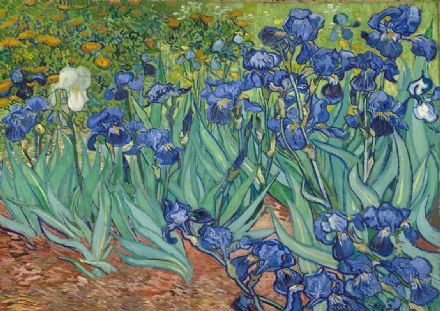 Van Gogh, Vincent: Irises. Fine Art Print/Poster. Sizes: A4/A3/A2/A1 (0090)